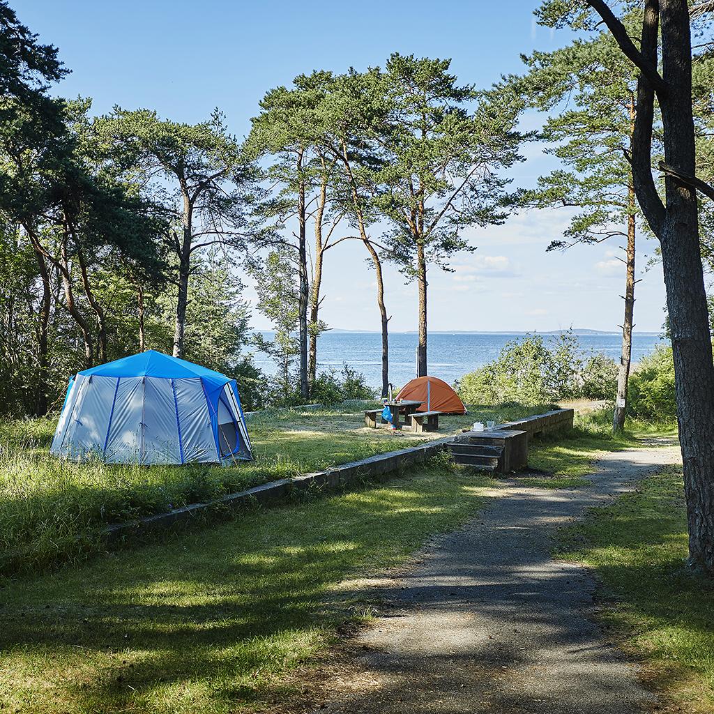 Teltplass nord på øya Østre Bolæren